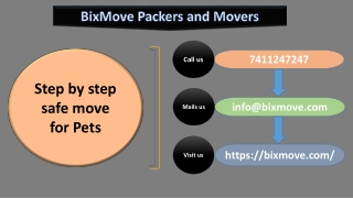 Step by step safe move for Pets