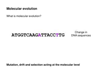 Molecular evolution What is molecular evolution? Mutation, drift and selection acting at the molecular level