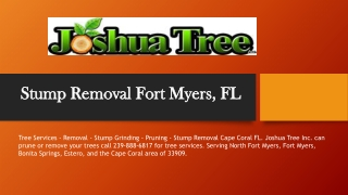 Stump Removal Fort Myers, FL