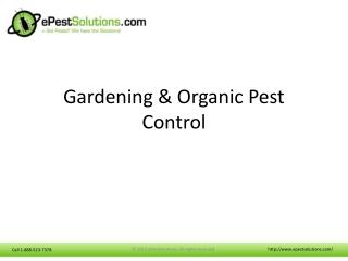 Gardening and Organic Pest Control