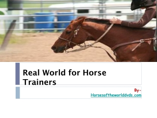 Real World For Horse Trainers