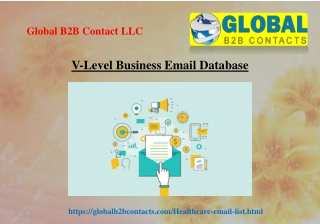 V Level Business Email Database
