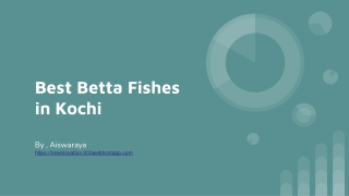 how to find out good quality of fighter fish?
