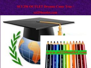 SCI 256 OUTLET Dreams Come True / sci256outlet.com