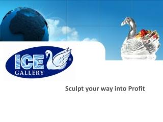 ICE GALLERY - franchise presentation