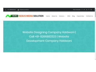 Website Designing Company Haldwani