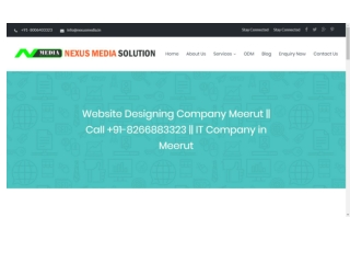 Best Website Designing Company Meerut