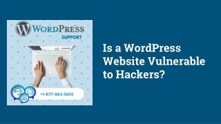 Is a WordPress Website Vulnerable to Hackers?