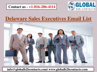 Delaware Sales Executives Email List