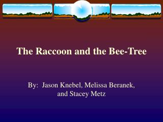 The Raccoon and the Bee-Tree
