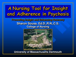 A Nursing Tool for Insight and Adherence in Psychosis