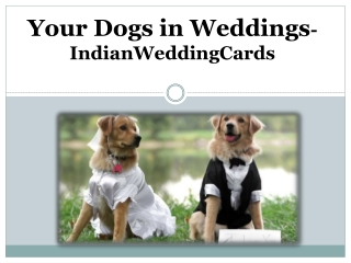 How to Include Your Dogs in Weddings – IndianWeddingCards