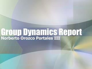 Group Dynamics Report