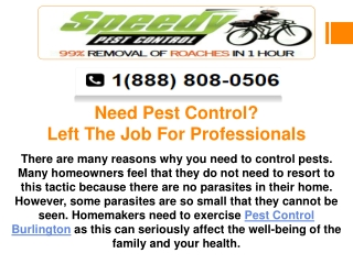 Need Pest Control? Left The Job For Professionals