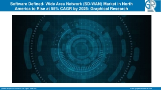 North America Software Defined- Wide Area Network (SD-WAN) Market to Observe Hike at 55% CAGR by 2025
