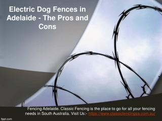 Electric Dog Fences in Adelaide - The Pros and Cons
