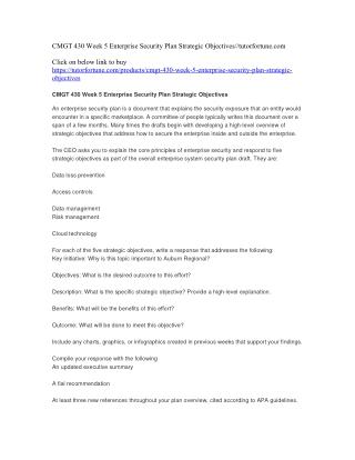 CMGT 430 Week 5 Enterprise Security Plan Strategic Objectives//tutorfortune.com