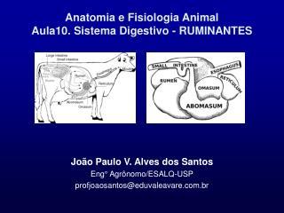 Anatomia e Fisiologia Animal Aula10. Sistema Digestivo - RUMINANTES