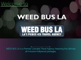 Cannabis Grow Tour, Cannabis Tour