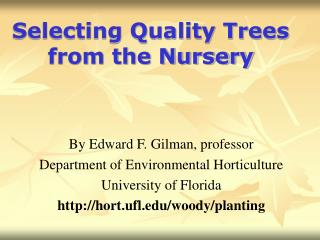 Selecting Quality Trees from the Nursery