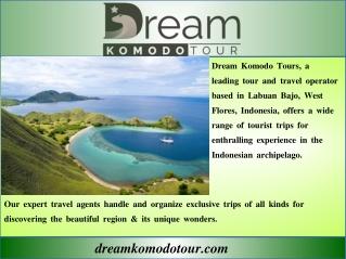 best Komodo Tour