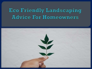 Eco Friendly Landscaping Advice For Homeowners