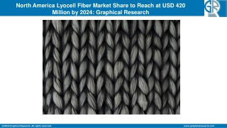 North America Lyocell Fiber Market 2019 Industry Analysis, Size, Share, Growth, Trends and Forecast by 2024