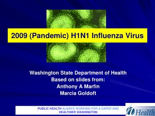 2009 (Pandemic) H1N1 Influenza Virus