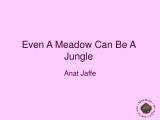 Even A Meadow Can Be A Jungle