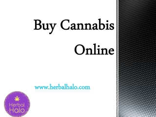 Buy Cannabis Online - herbalhalo.com