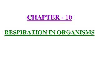 CHAPTER - 10 RESPIRATION IN ORGANISMS
