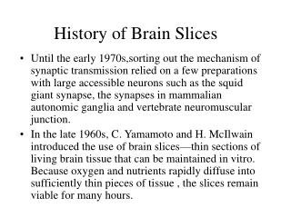History of Brain Slices