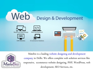 Professional web designing company in Delhi