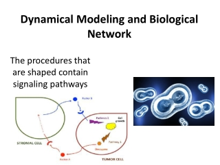 Dynamical modeling and biological network course | Online Course | Udemy