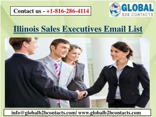 Illinois Sales Executives Email List