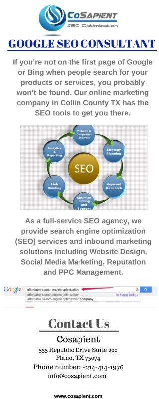 Google Seo Consultant