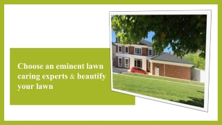 Choose an eminent lawn caring experts & beautify your lawn