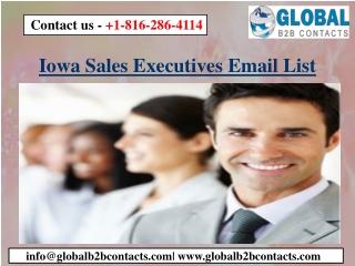 Iowa Sales Executives Email List