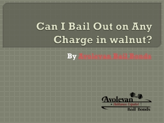 Can I Bail Out on Any Charge?