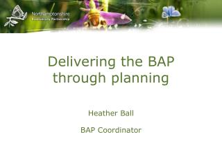 Delivering the BAP through planning