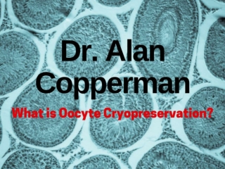Dr. Alan Copperman - What is Oocyte Cryopreservation
