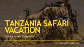 Best Honeymooners Safaris in Tanzania