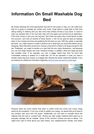 Information On Small Washable Dog Bed