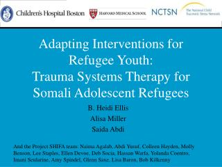 Adapting Interventions for Refugee Youth:  Trauma Systems Therapy for Somali Adolescent Refugees