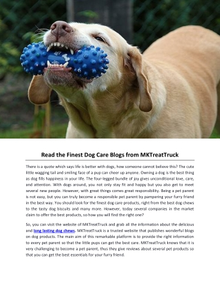 Read the Finest Dog Care Blogs from MKTreatTruck