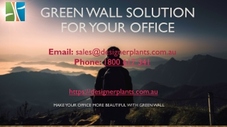 Green wall Services at low cost