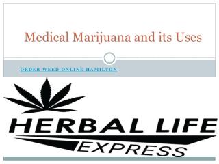Medical Marijuana and Its Uses