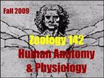 Zoology 142