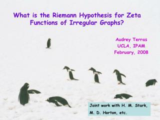 What is the Riemann Hypothesis for Zeta Functions of Irregular Graphs?