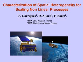 Characterization of Spatial Heterogeneity for Scaling Non Linear Processes